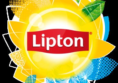 LIPTON2019
