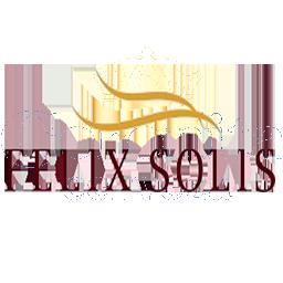 felix_solis